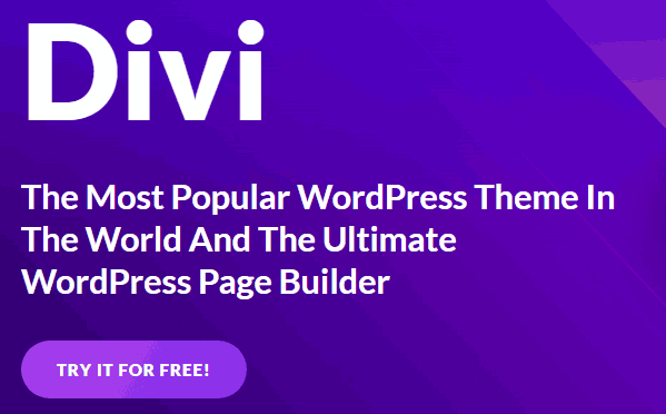 платный шаблон divi wordpress